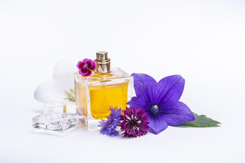 Tworzenie pachnidło esencja, lato kwiatów cukierki światła woń, pachnidło butelka i kolorowi aromatyczni kwiaty odizolowywający, obraz stock