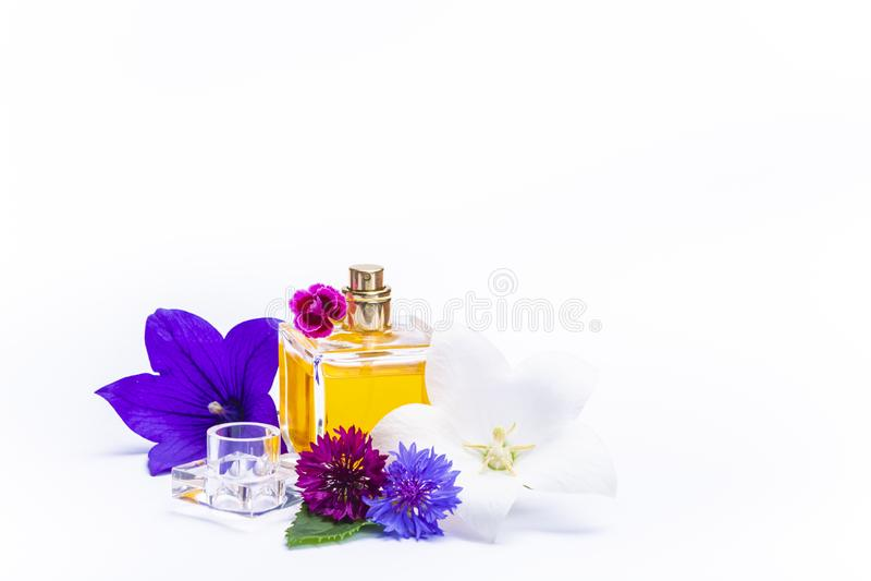 Tworzenie pachnidło esencja, lato kwiatów cukierki światła woń, pachnidło butelka i kolorowi aromatyczni kwiaty odizolowywający, zdjęcie royalty free