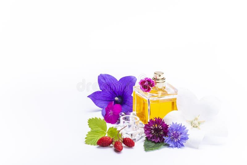 Tworzenie pachnidło esencja, lato kwiatów cukierki światła woń, pachnidło butelka i kolorowi aromatyczni kwiaty odizolowywający, fotografia stock
