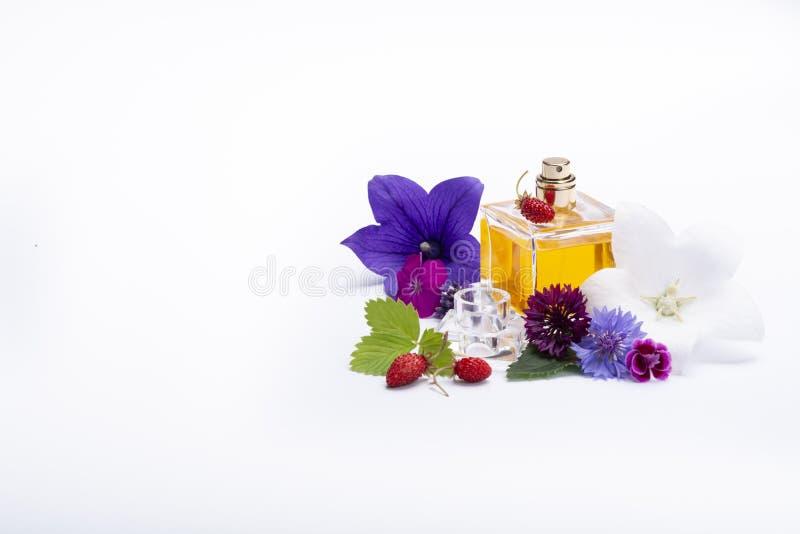 Tworzenie pachnidło esencja, lato kwiatów cukierki światła woń, pachnidło butelka i kolorowi aromatyczni kwiaty odizolowywający, obraz royalty free