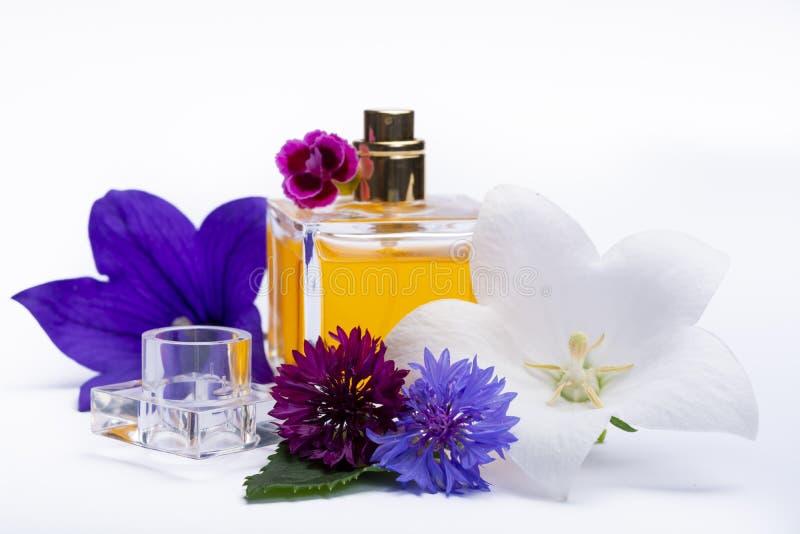 Tworzenie pachnidło esencja, lato kwiatów cukierki światła woń, pachnidło butelka i kolorowi aromatyczni kwiaty odizolowywający, obrazy stock