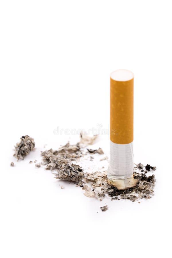 tyłek papierosa zdjęcie royalty free