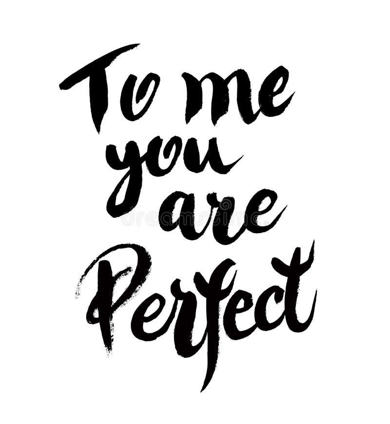 Ty jesteś perfect kaligraficznym plakatem royalty ilustracja