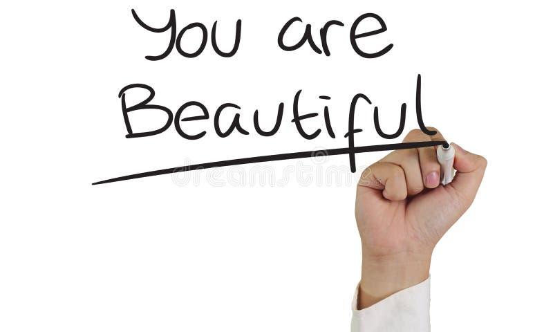 Ty jesteś piękny fotografia royalty free