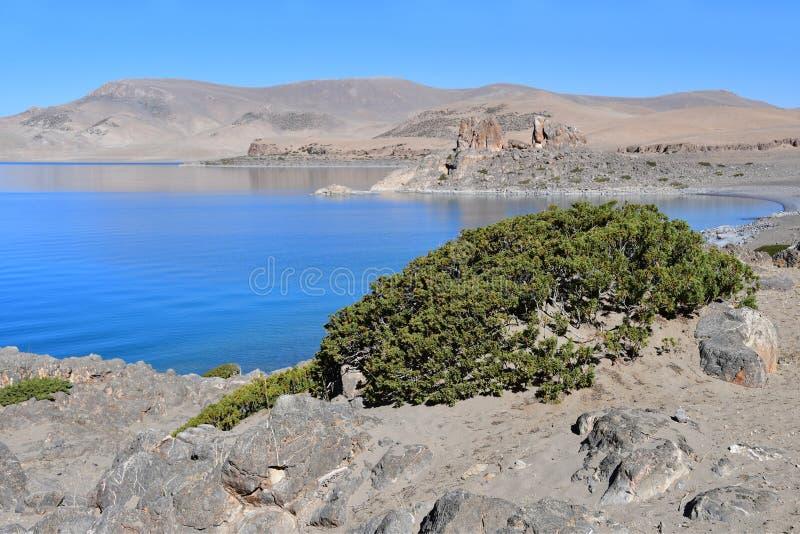 Tybet, święty Tso Nam Tso w lecie jezioro, 4718 metrów nad poziom morza miejsce władzy obrazy stock