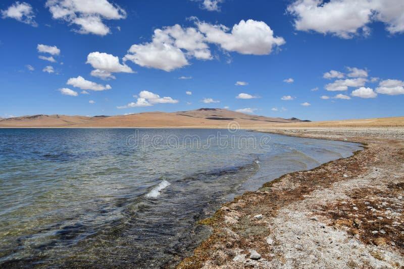 Tybet, Gomang jezioro w lecie zdjęcia royalty free
