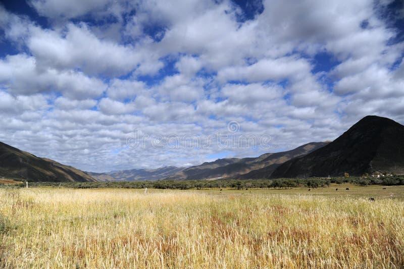 Tybet plateau obraz stock