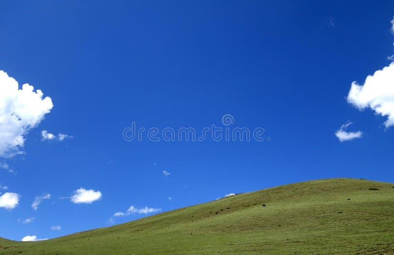 Tybet scenerii Gniewny rzeczny chył 72 obrazy stock