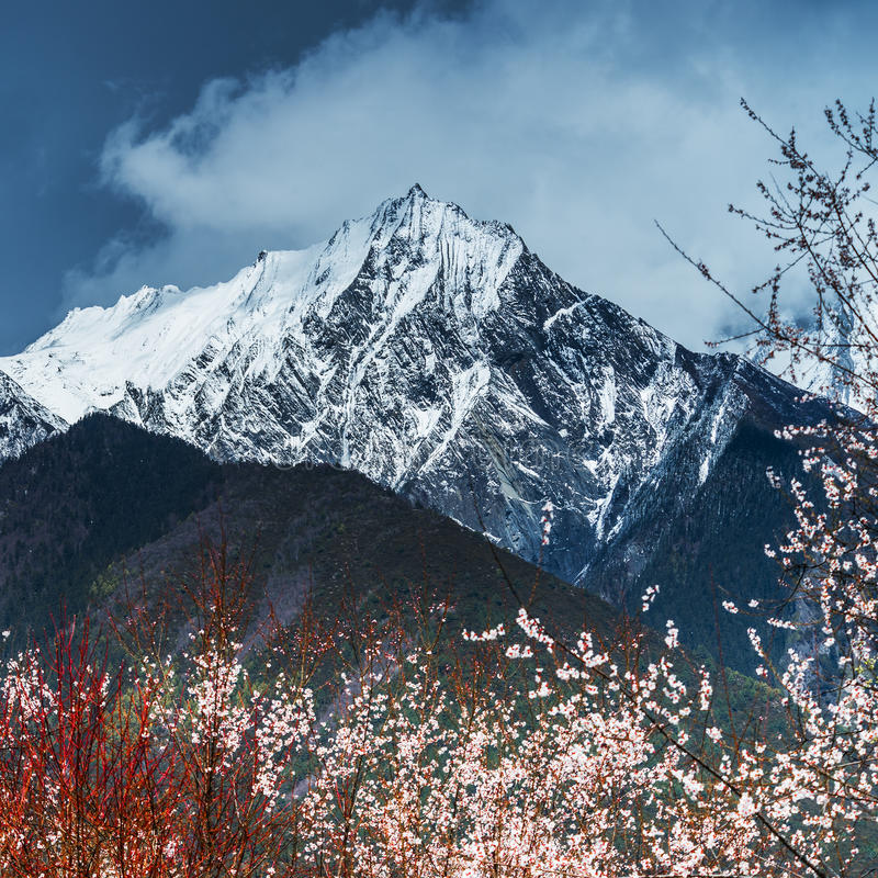 Tybetański krajobraz zdjęcia stock