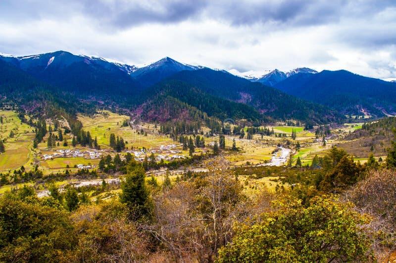 Tybetański plateau Lu Lang Zhen (Lulang miasteczko) zdjęcia royalty free