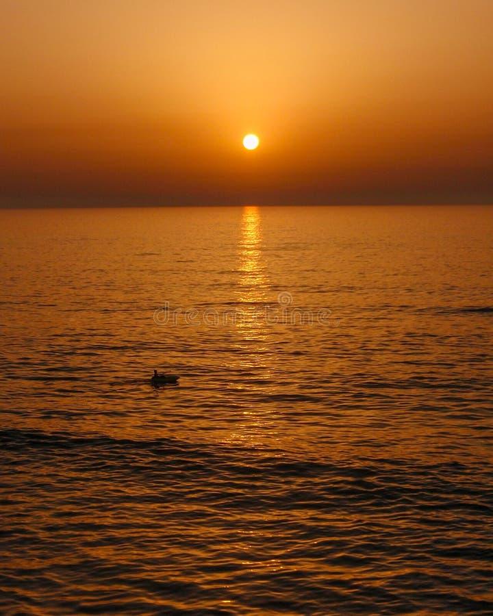 Tyck om varje solnedgång, tyck om enkelt liv och de stora nöjena som kommer med den royaltyfria foton