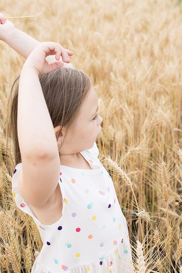 tycka om naturen Liten flickastag i det guld- vetefältet royaltyfri fotografi