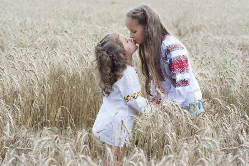 tycka om naturen Två lilla systrar som blir i det guld- vetefältet och, kysser sig royaltyfria foton