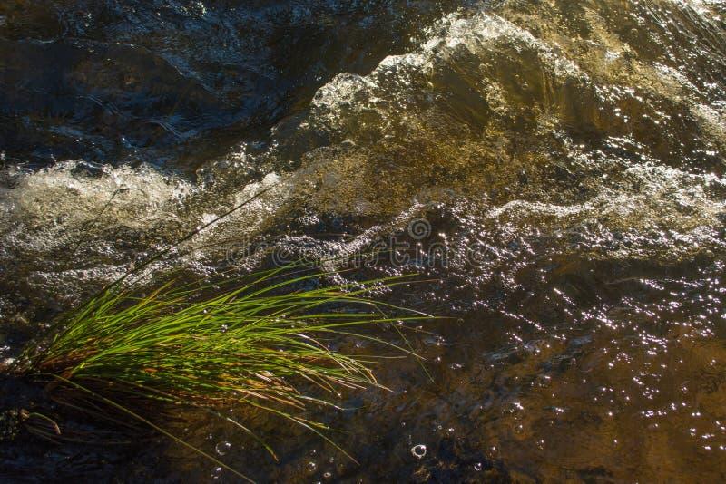 Tyenna River Tasmania. Tyenna River after recent rain stock photos