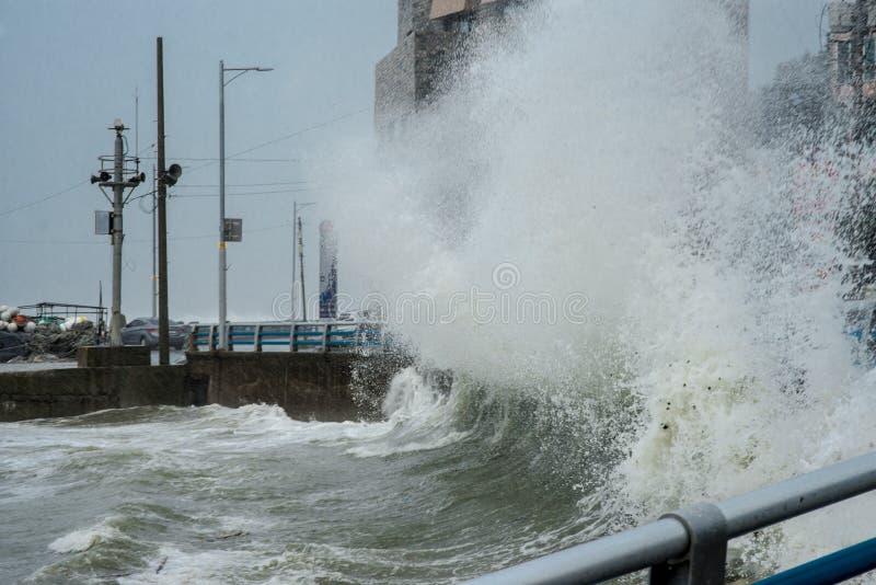 Tyfoongoni slagen Busan en Zuid-Korea B stock foto