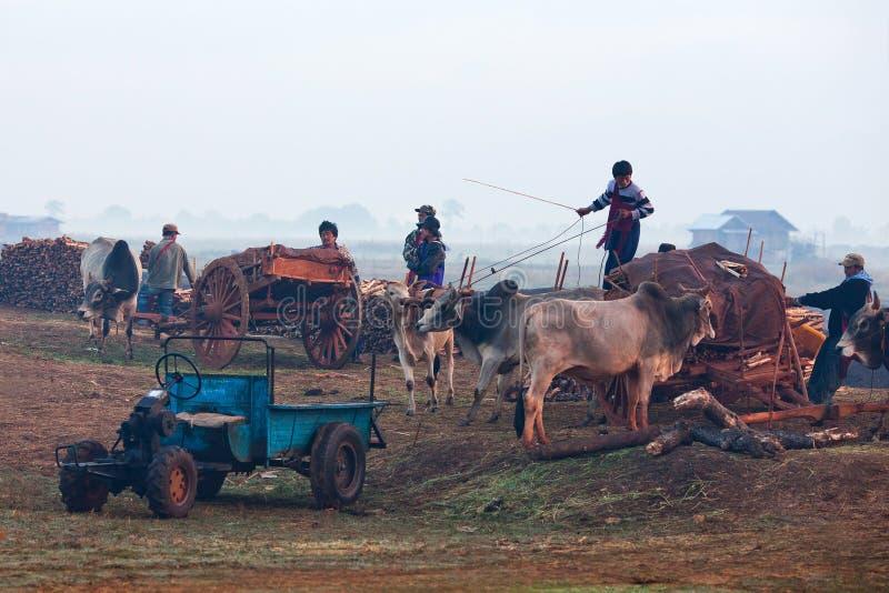 Tygodnika rynek w shanu stanie, Myanmar obraz royalty free