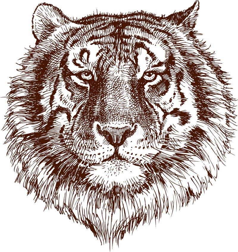 Download Tygrys ilustracja wektor. Obraz złożonej z twarz, dziki - 25194253