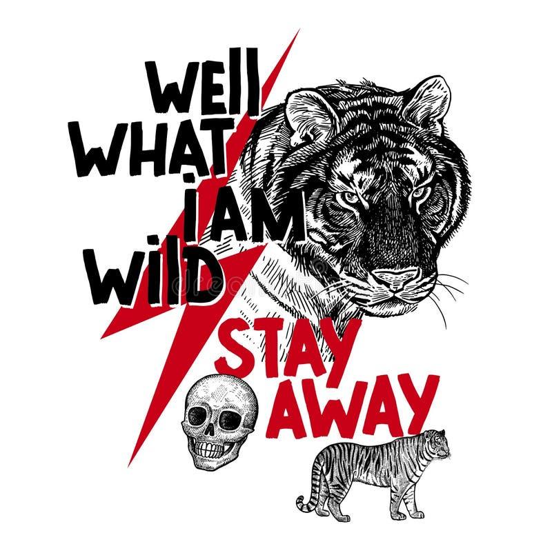 Tygrys, czaszka i inskrypcja, Dobrze zostajemy daleko od «co jestem dziki « Wektorowy plakat ilustracja wektor