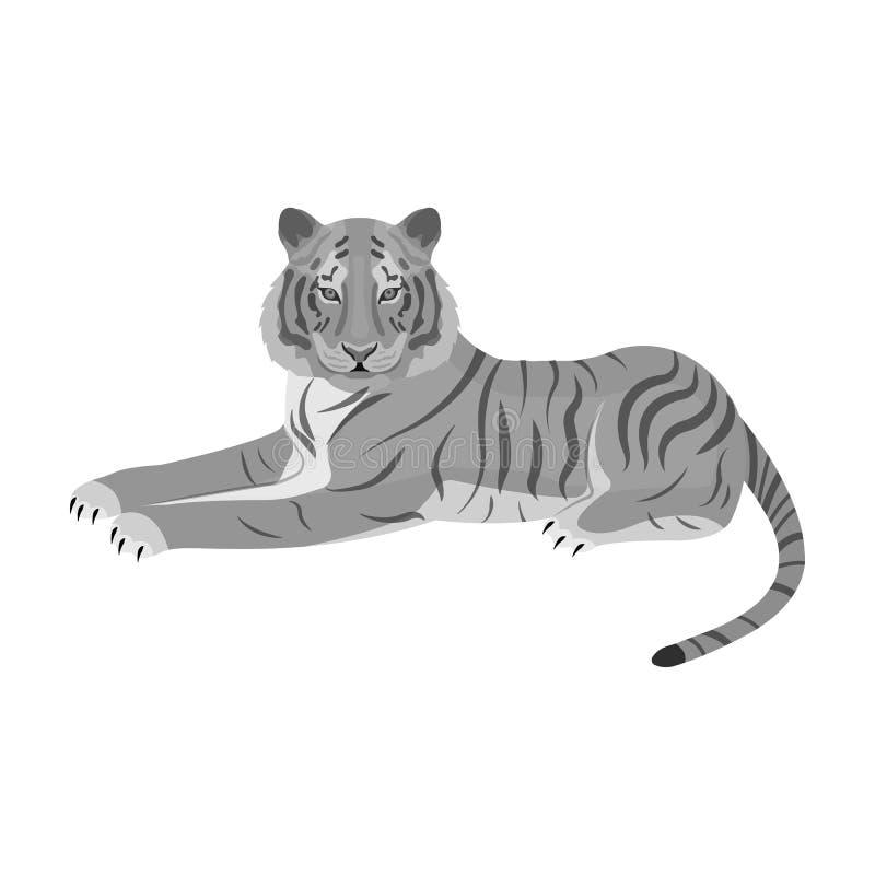 Tygrys, drapieżczy zwierzę Belgijski tygrys, wielkiego dzikiego kota pojedyncza ikona w monochromu stylu symbolu wektorowym zapas ilustracji