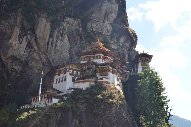 Tygrys Gniazdowa świątynia Bhutan obrazy royalty free