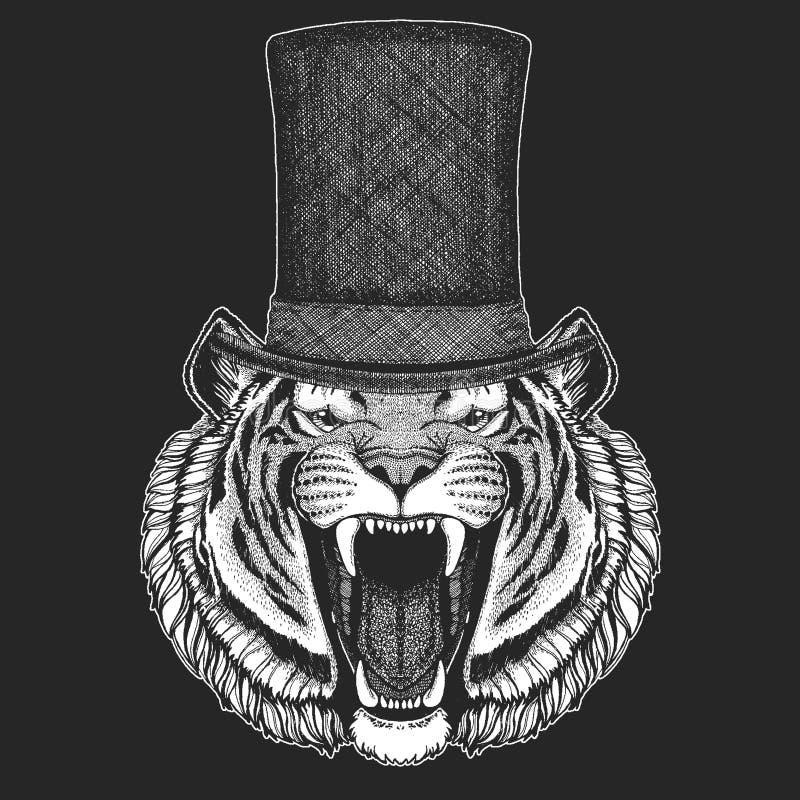Tygrys Odgórny kapelusz, butla Modnisia zwierzę, dżentelmen Klasyczny pióropusz Drukuje dla dzieci koszulki, dzieciaków odziewać ilustracja wektor