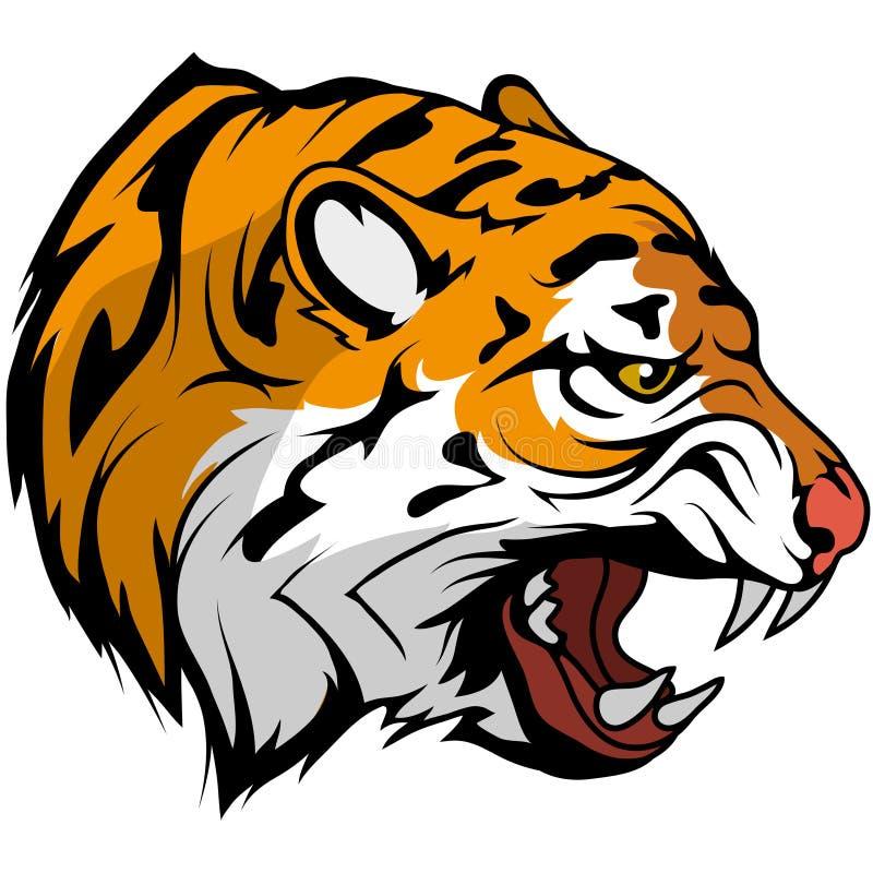 Tygrysa kierowniczy wektorowy rysunek, tygrysi twarz rysunku nakreślenie, tygrys głowa barwił rysunek ilustracja wektor