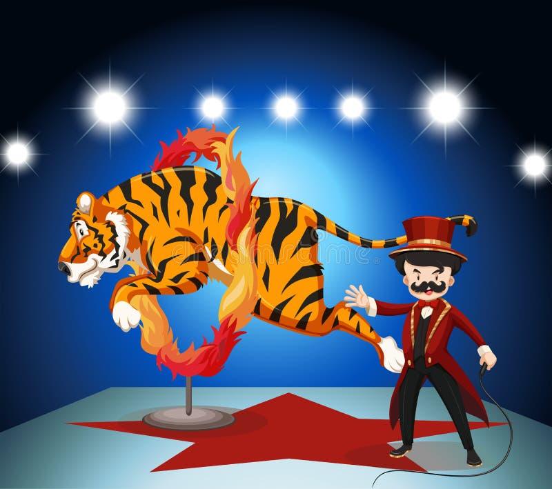 Tygrysi doskakiwanie przez pierścionku ogień royalty ilustracja