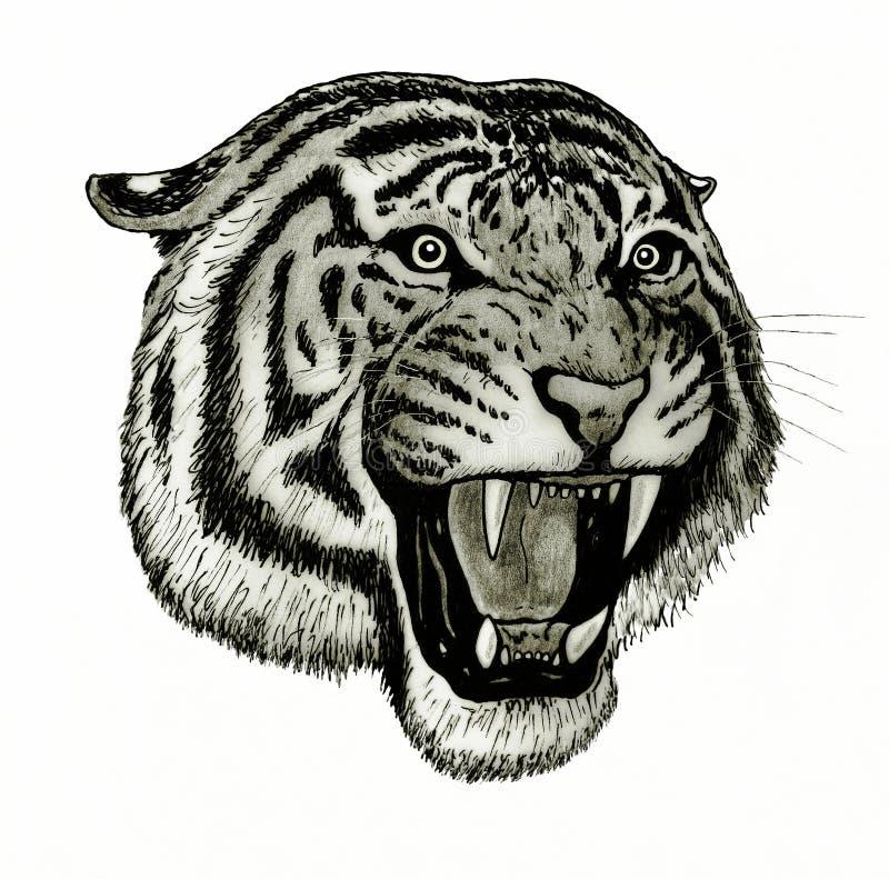 Tygrysi twarzy huczenie ilustracji