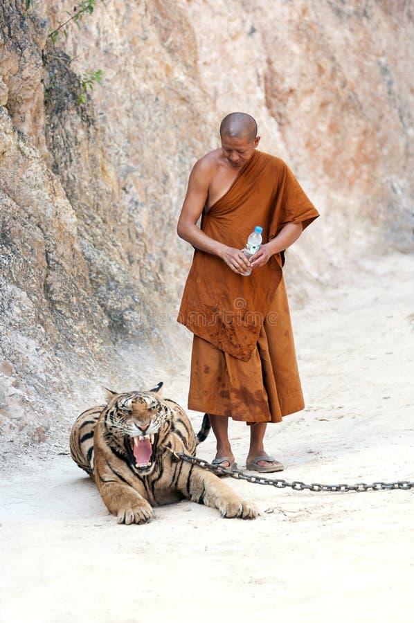 Tygrysia świątynia obrazy royalty free