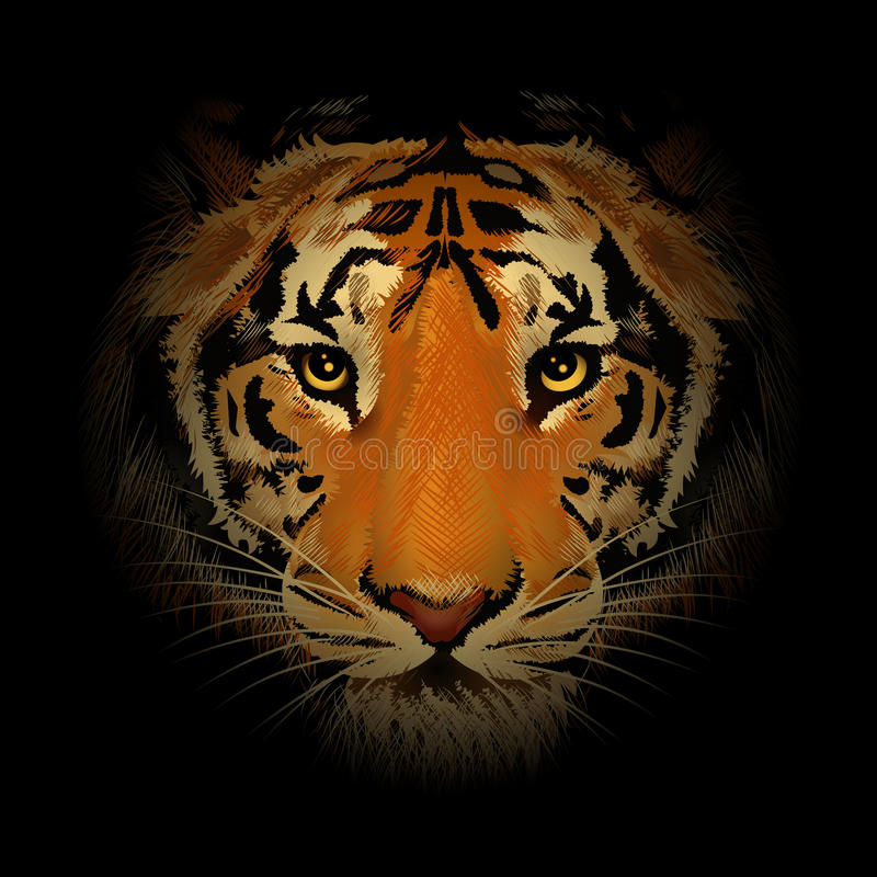 Tygrysia głowa ilustracji