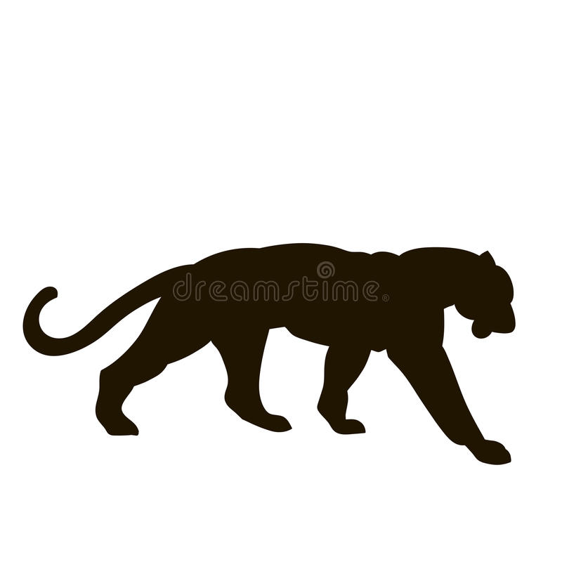 Tygrysia wektorowa ilustracja ilustracja wektor