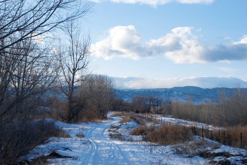 tylna krzyw naprzód droga śnieżna zdjęcia stock