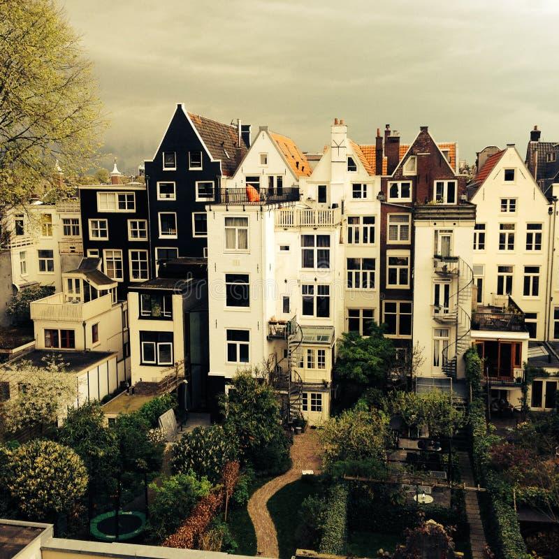 Tylna strona starzy dworów domy w Amsterdam holandie zdjęcie royalty free