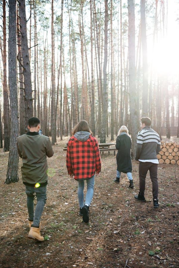 Tylna widok fotografia grupa przyjaciele chodzi outdoors fotografia stock