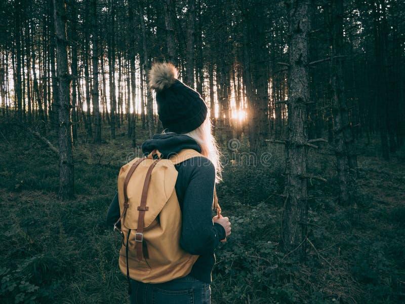 Tylni widok backpacker kobiety odprowadzenie w lesie obraz stock