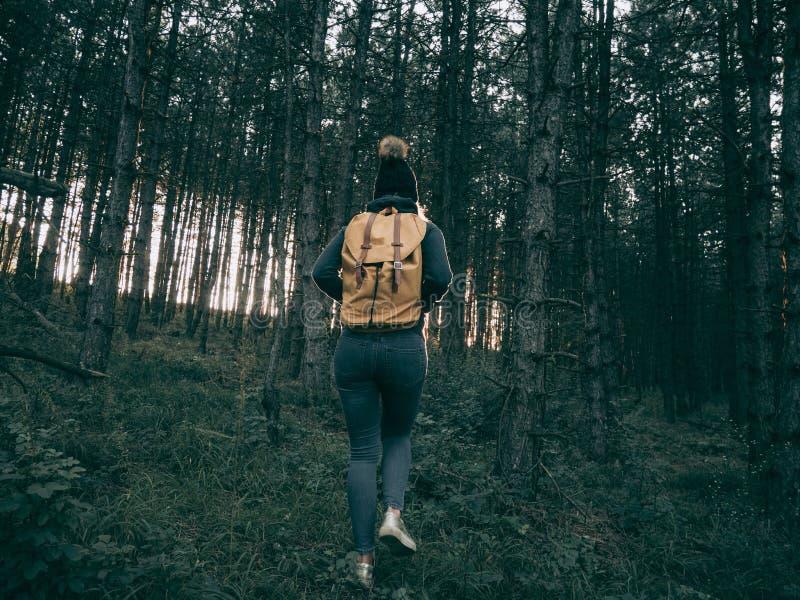 Tylni widok backpacker kobiety odprowadzenie w lesie fotografia stock