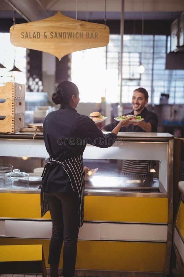 Tylni widok bierze jedzenie talerze od kelnera przy kontuarem kelnerka zdjęcie royalty free