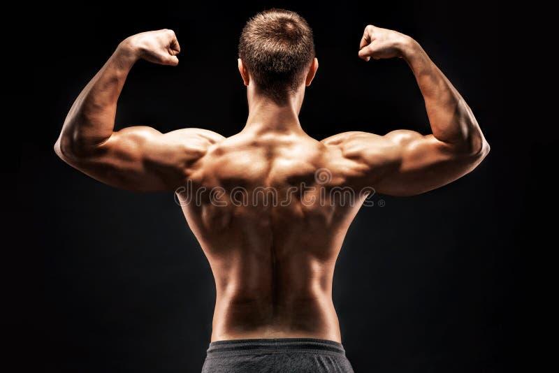 Tylni widok mięśniowy młodego człowieka seansu plecy, bicepsów mięśnie zdjęcie stock