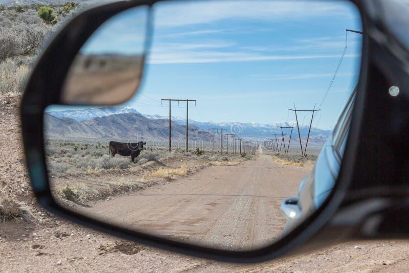 Tylni widok Nevada krajobraz obraz stock