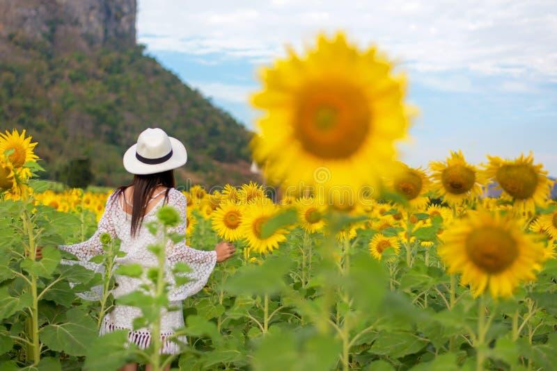 Tylni widok podróży styl życia kobiety stoi i relaksuje w słonecznika polu w letnim dniu i szczęśliwych powołaniach, zdjęcia royalty free