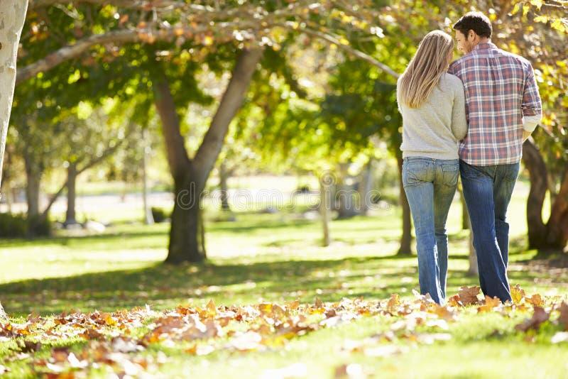 Tylni widok Romantyczny pary odprowadzenie Przez jesień lasu fotografia stock