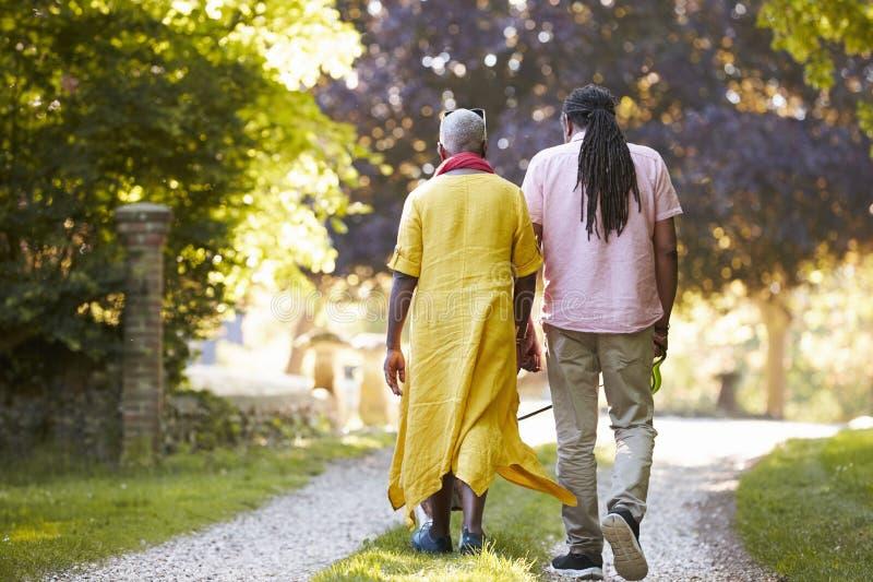 Tylni widok Starszy pary odprowadzenia zwierzęcia domowego buldog W wsi obraz royalty free