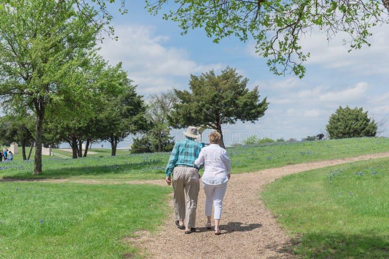 Tylni widok szczęśliwy starszy pary odprowadzenie w Bluebonnet parku obrazy royalty free