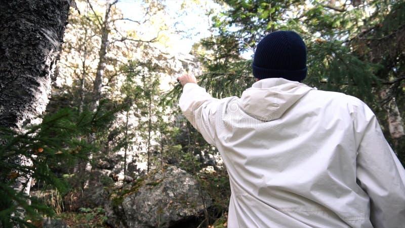 Tylni widoku młody człowiek ucieka w ciemnego las na sposobie spotykać gałąź footage Mężczyzna biega w drewnach jakby biega obrazy royalty free