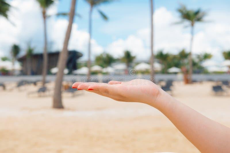 Tylny widok eleganckiej kobiety mienia ręki palma up z morzem na zdjęcia stock