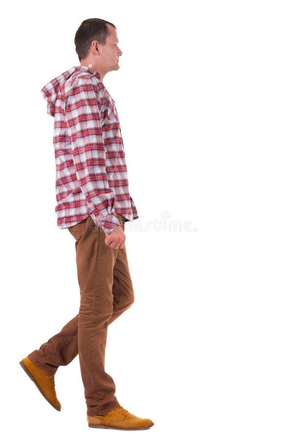 Tylny widok iść facet w szkockiej kraty koszula z kapiszonem. zdjęcia royalty free