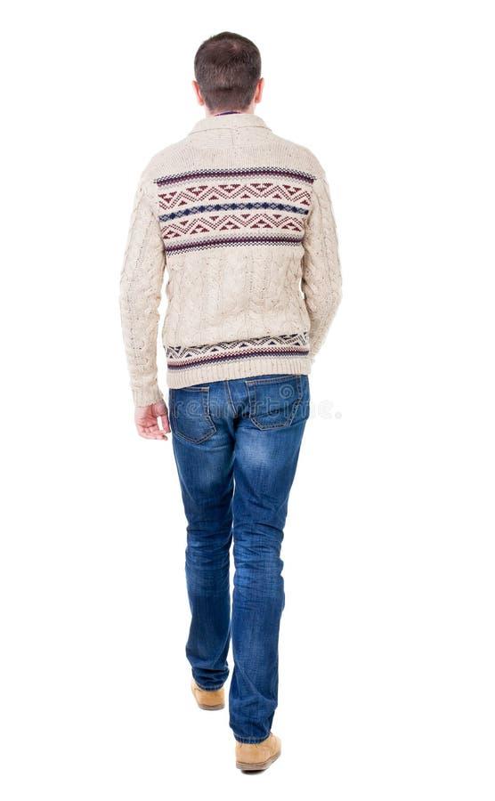 Tylny widok iść przystojny mężczyzna w trykotowym pulowerze fotografia royalty free