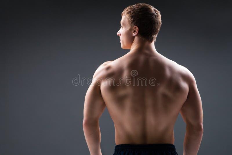 Tylny widok mięśniowy młody człowiek pokazuje obrazy stock