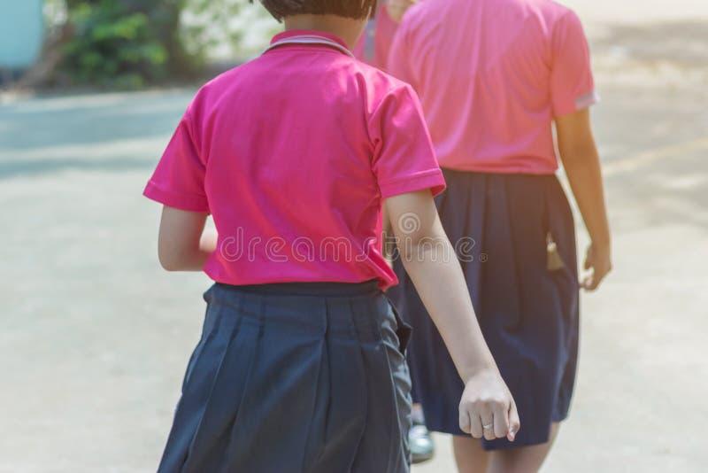 Tylny widok szcz??cie dziewczyny pocz?tkowi ucznie w r??owej koszula i b??kit sp?dnica chodzimy sale lekcyjne obraz stock