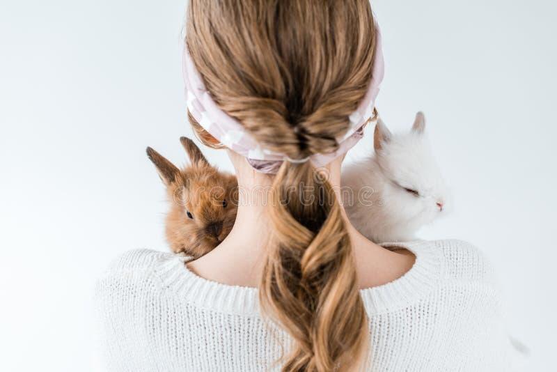 Tylny widok trzyma uroczych owłosionych króliki dziewczyna fotografia royalty free